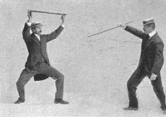 Double-Handed guard