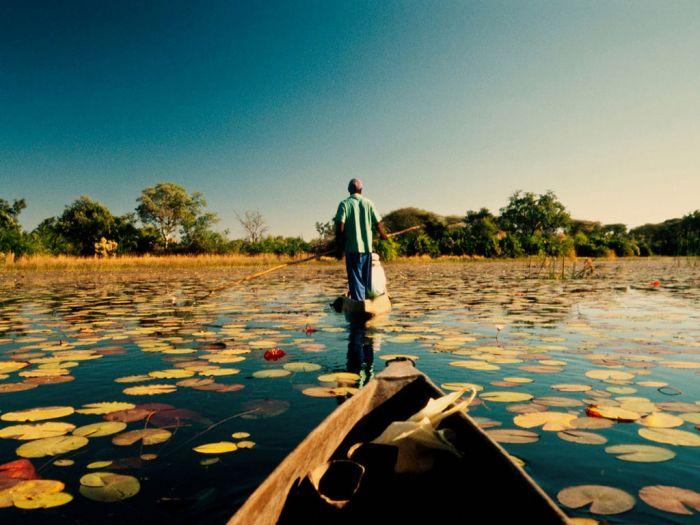 Крупнейшая дельта Земли - Окаванго