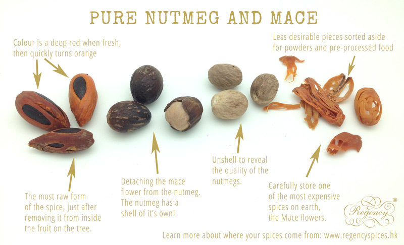 Stages_of_Mace_and_Nutmeg_Spice