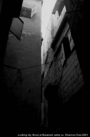 """Looking Up"" (c) Shannon Dow, Bourj el Barajneh, 2001"