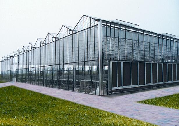 上海温室大棚工程