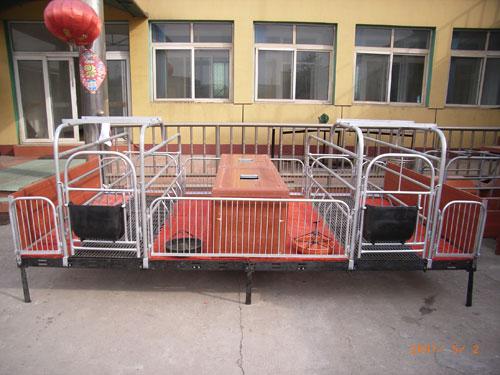 高床分娩栏价格、高床分娩栏销售、高床分娩栏供应