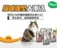 #猫咪体型大测试#