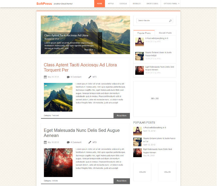 SoftPress Pinstagram seo optimized wordpress theme