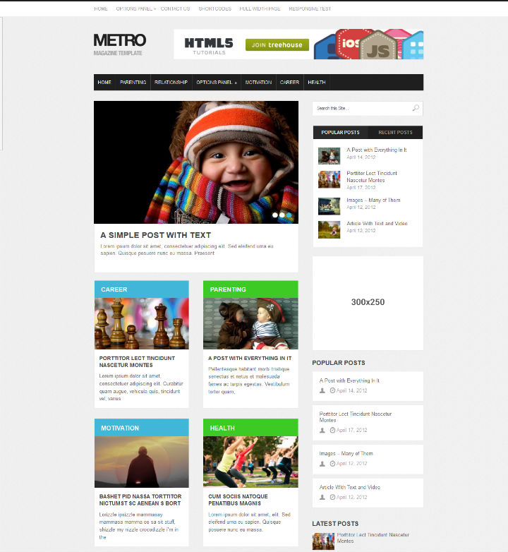 Metro SEO Ready wordpress Theme