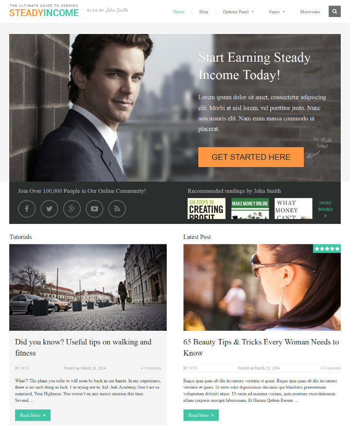 SteadyIncome wordpress personal blog theme