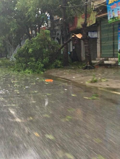 Tin mới nhất cơn bão số 1: Cảnh tan hoang ở các địa phương tâm bão - Ảnh 6