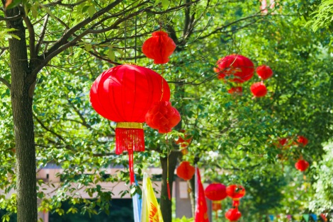 Red Chinese lanterns hanging from trees