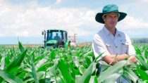 Farmer Bruce Shepherd standing in his field of maize with a tractor working behind