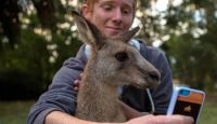 iphone-kangaroo-selfie_200x115.jpg