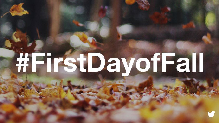 Image of leaves on ground with #FirstDayofFall in center