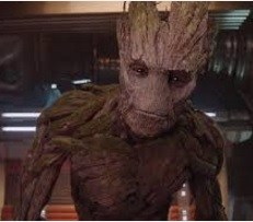 groot picture