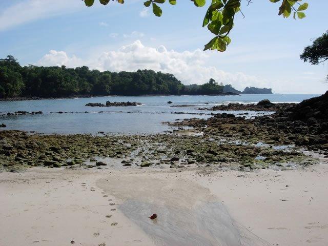 Manuel Antonio National Park - Beach