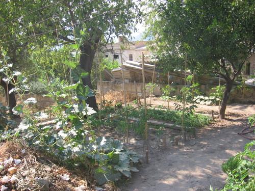 jardin 1 cardinal despuig