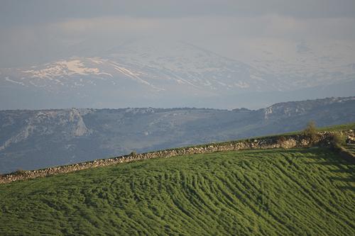 Sierra Nevada desde Torre Cardela