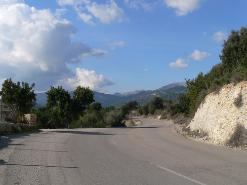 The road to Selva