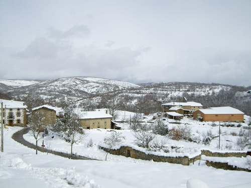 nevada marzo 5
