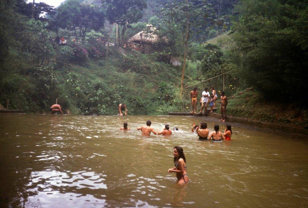 Jungle bath'   Mapio.net