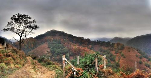 Montes de Endara