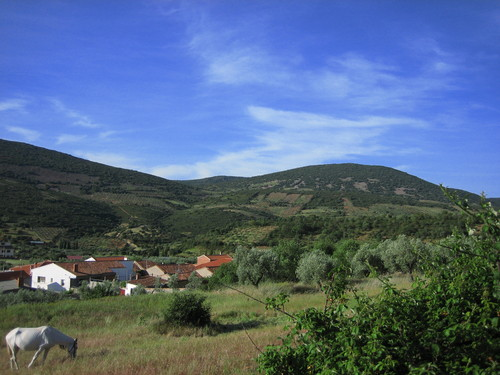 vista de Buenasbodas, al fondo la sierra de la Barrosa