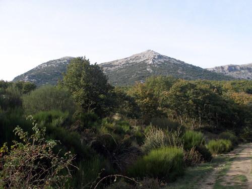 Camino Tejeda de Tosante 5