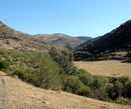 Camino Poza de las Lomas 1