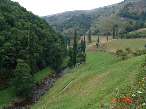 Valle y prados,Carballo