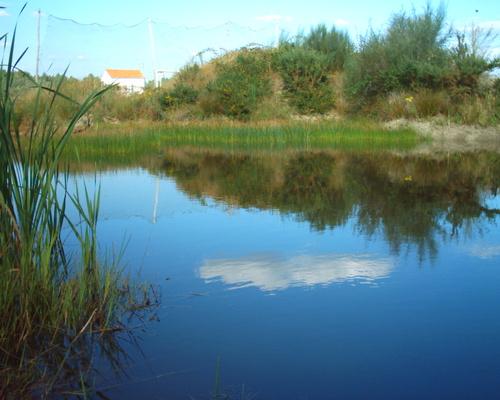 Sober, A Carqueixa, estanque