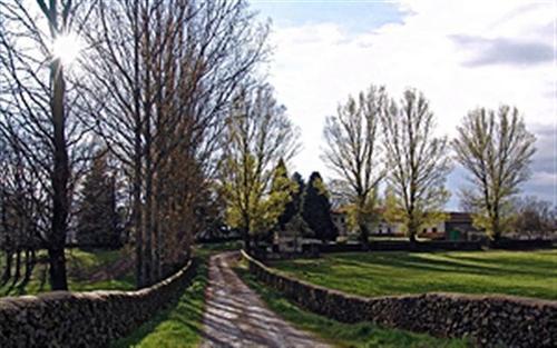 Camino de entrada a Perosin