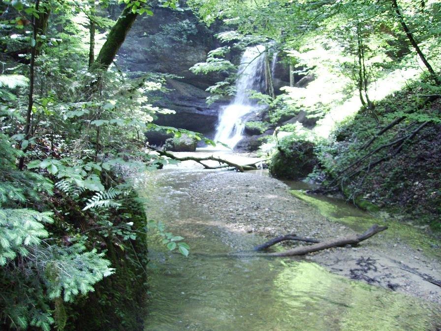 Wasserfall bei Scheidegg