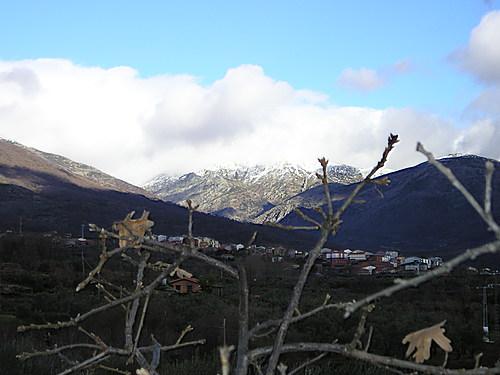 Cerca de Aldeanueva. Enero 2004
