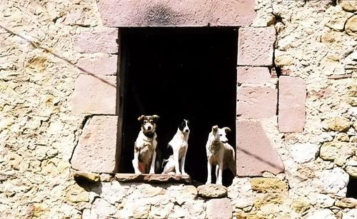 Tres vecinos. Cantabria