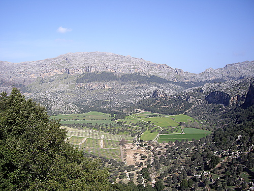 Puig Roig