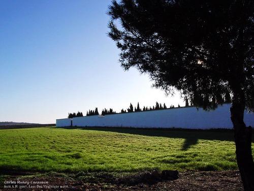 Camposanto.
