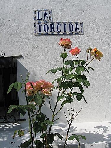 121 - El Rivero Julio 2006