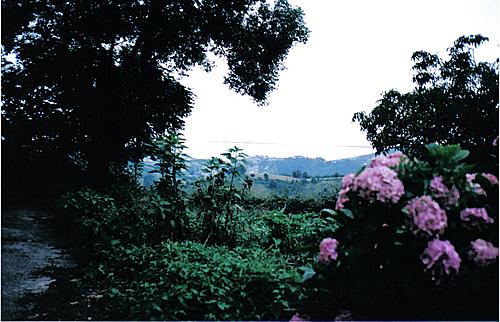 Vistas desde Aizarnazabal