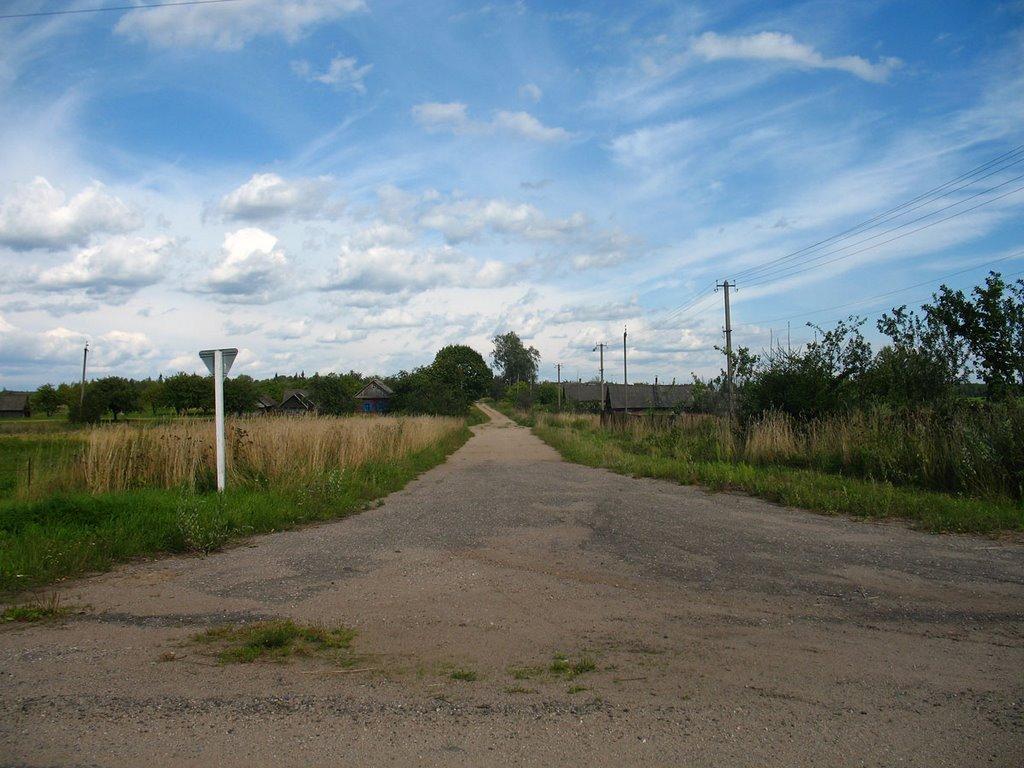 The Part of Bierašova village named 'Pasiolak'