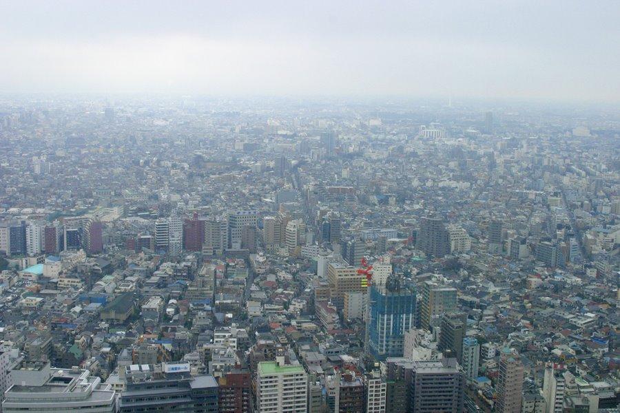 Ariel View of Tokyo