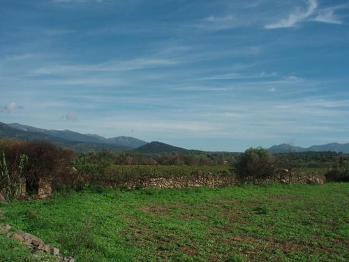 paisatge empordanès