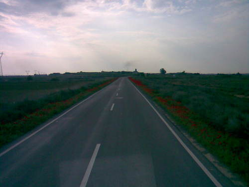 Carretera a Selgua