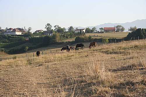 Oviedo 2006 013