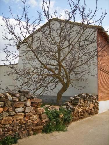 Rincón del pueblo