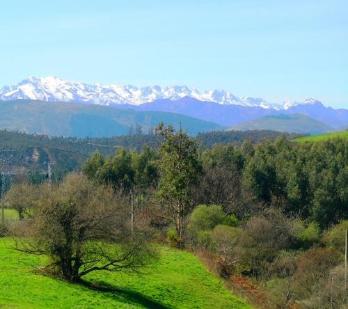 Picos de Europa vistos desde el Monte Corona