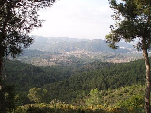 La Pobla Tornesa (Desierto de las Palmas)