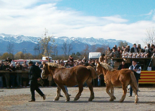 Puigcerdà (Fira del Cavall 2004)