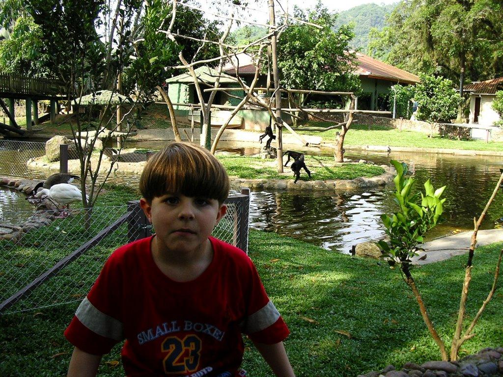 Lago - Zoo Pomerode