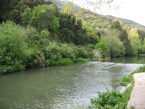 Entorno de Jimera de Libar. Málaga