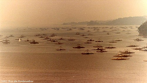 1982, Ria de Pontevedra, Galizia