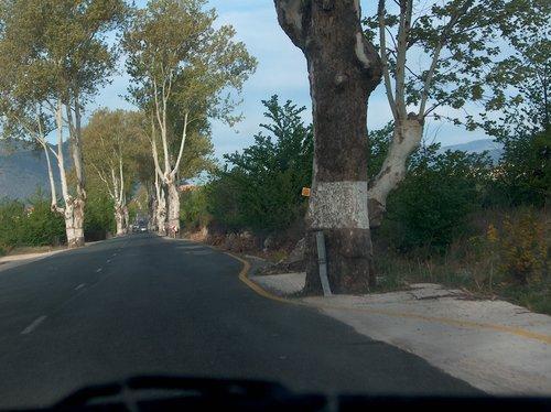 2006 Abril - Barranda (Carretera 2)