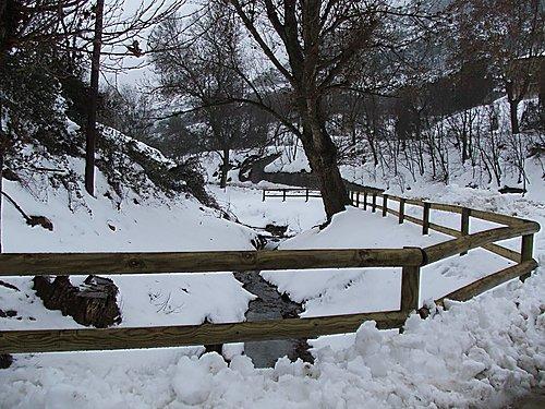 Cabra del Camp. Hivern 2006 (md)